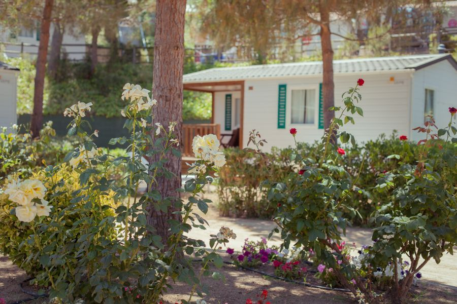 Cala Gogo Forest Exterior Mobil home con aire